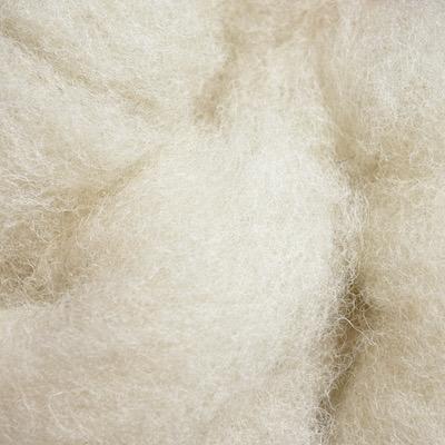 Hill Radnor Fleece (100g pack of sliver)