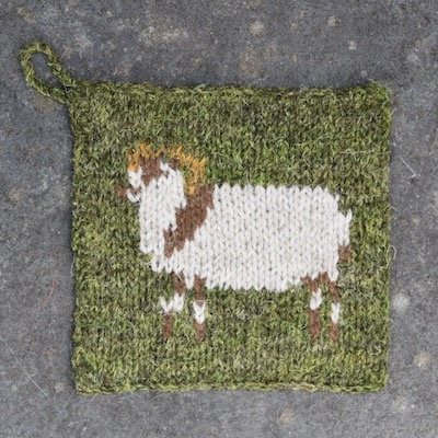 Pot Holder — Boreray Sheep